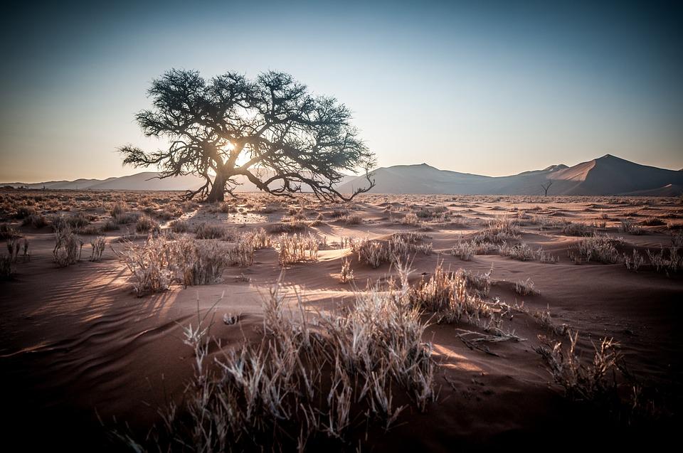 Dunes de Namibie 2