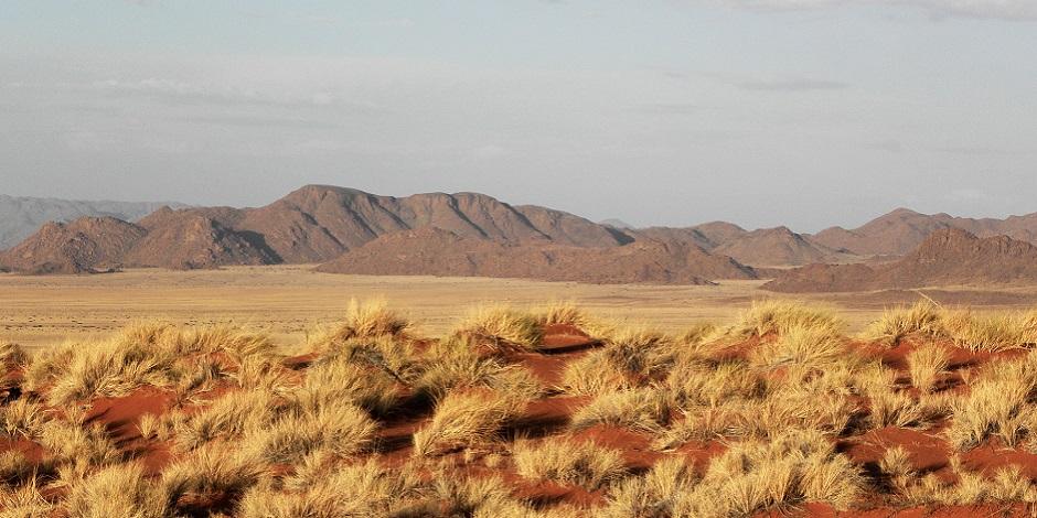 Parc-national-Namib-Naukluft